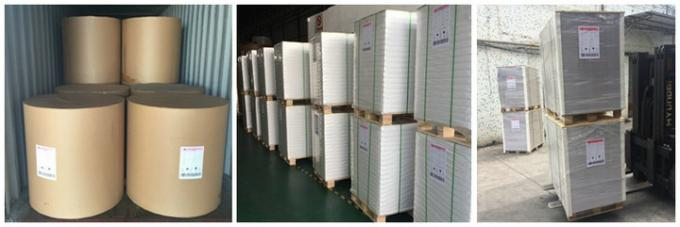 FSC Approved 60g 70g 80g Uncoated Woodfree Paper Offset Printing In Reel or Sheet